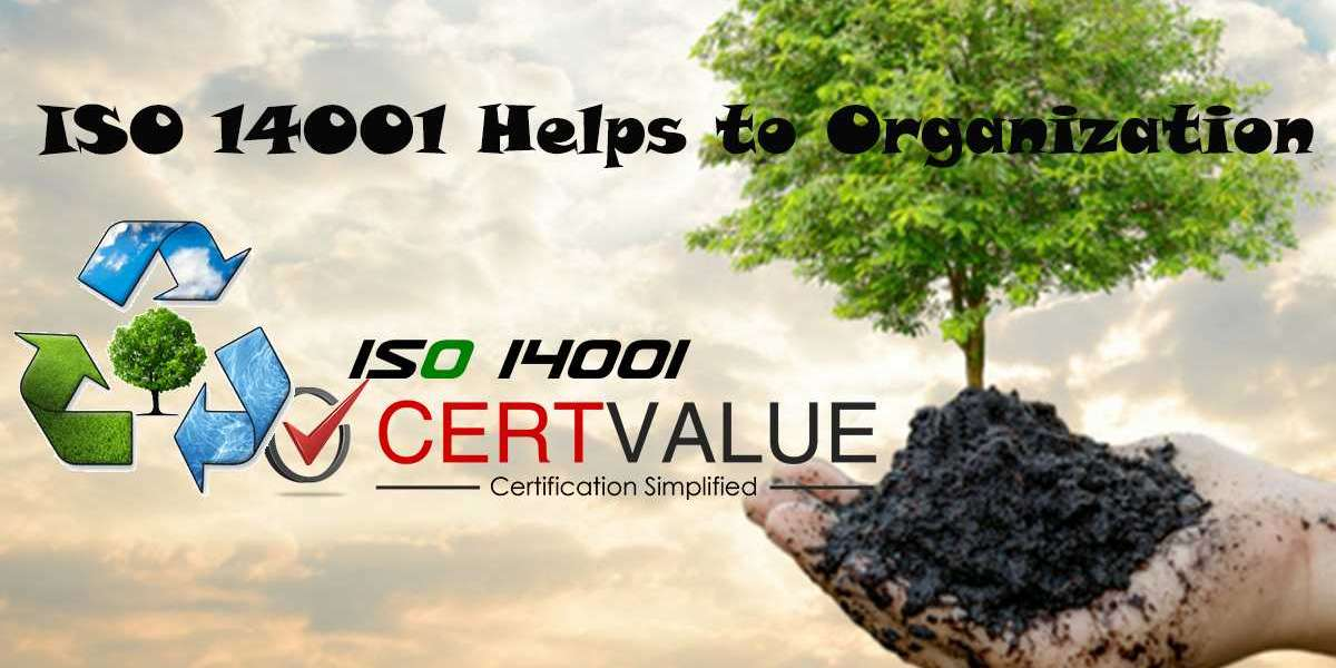 How to Allocate Roles and Responsibilities According to ISO 14001 Certification in Oman?