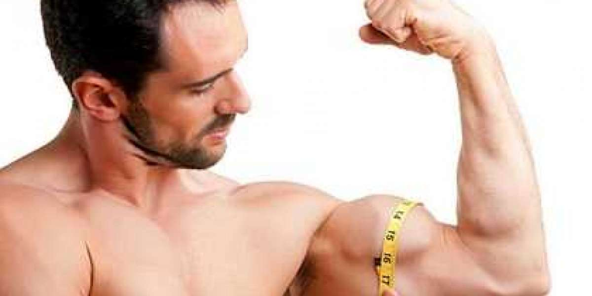 Basics Of Body Lean muscle Expeditious